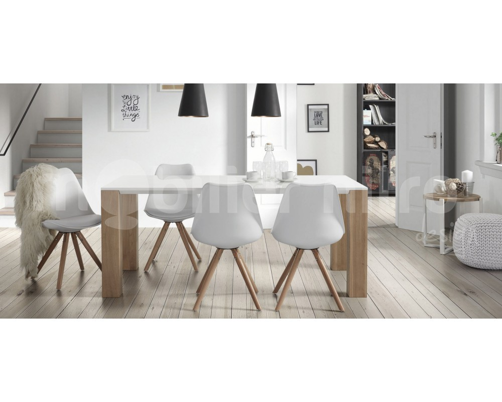 Table chaises salle manger le monde de l a for Chaise de table a manger design